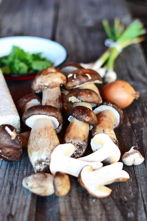 Paste cu ciuperci porcini (uscate)