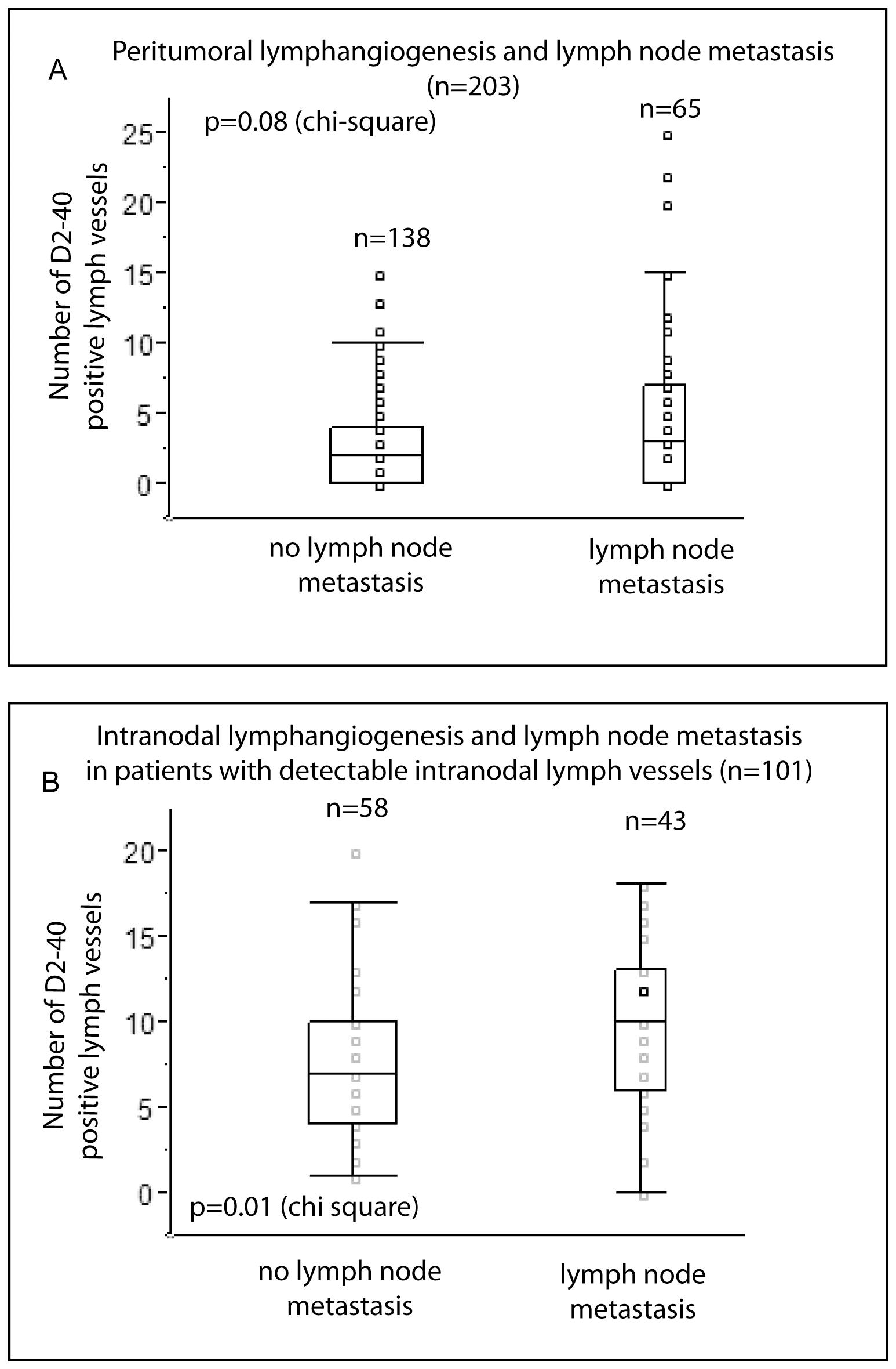 rectal cancer regional lymph nodes)