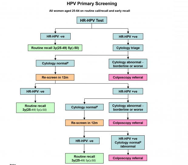 hpv screen nhs
