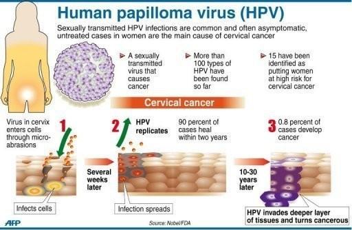 high risk hpv and cancer)