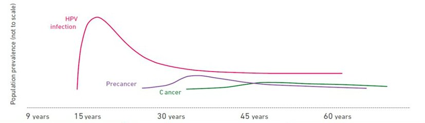 how often hpv causes cancer)