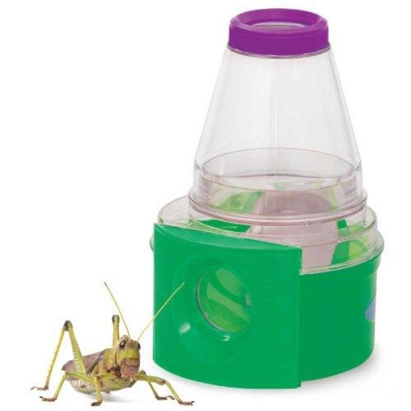 munca laboratorului de insecte)