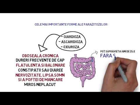 paraziți protozoali de l homme)