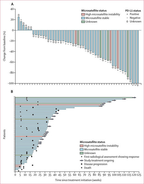 endometrial cancer pembrolizumab