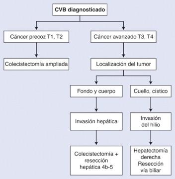 Cancer vesicula biliar histologia, Fisiopatologia Miastinia Gravis