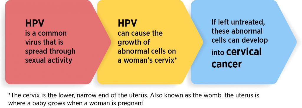 hpv human papillomavirus cancer
