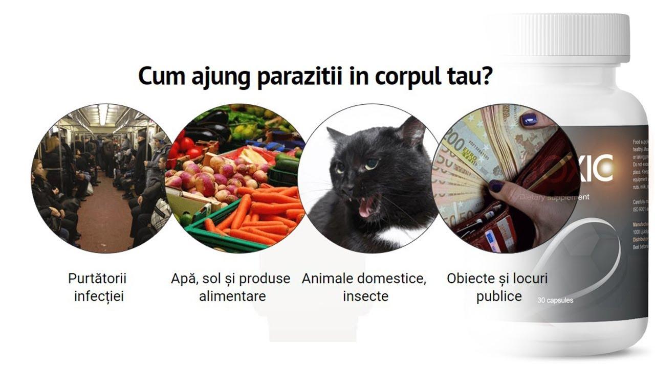 ce paraziți în organism)