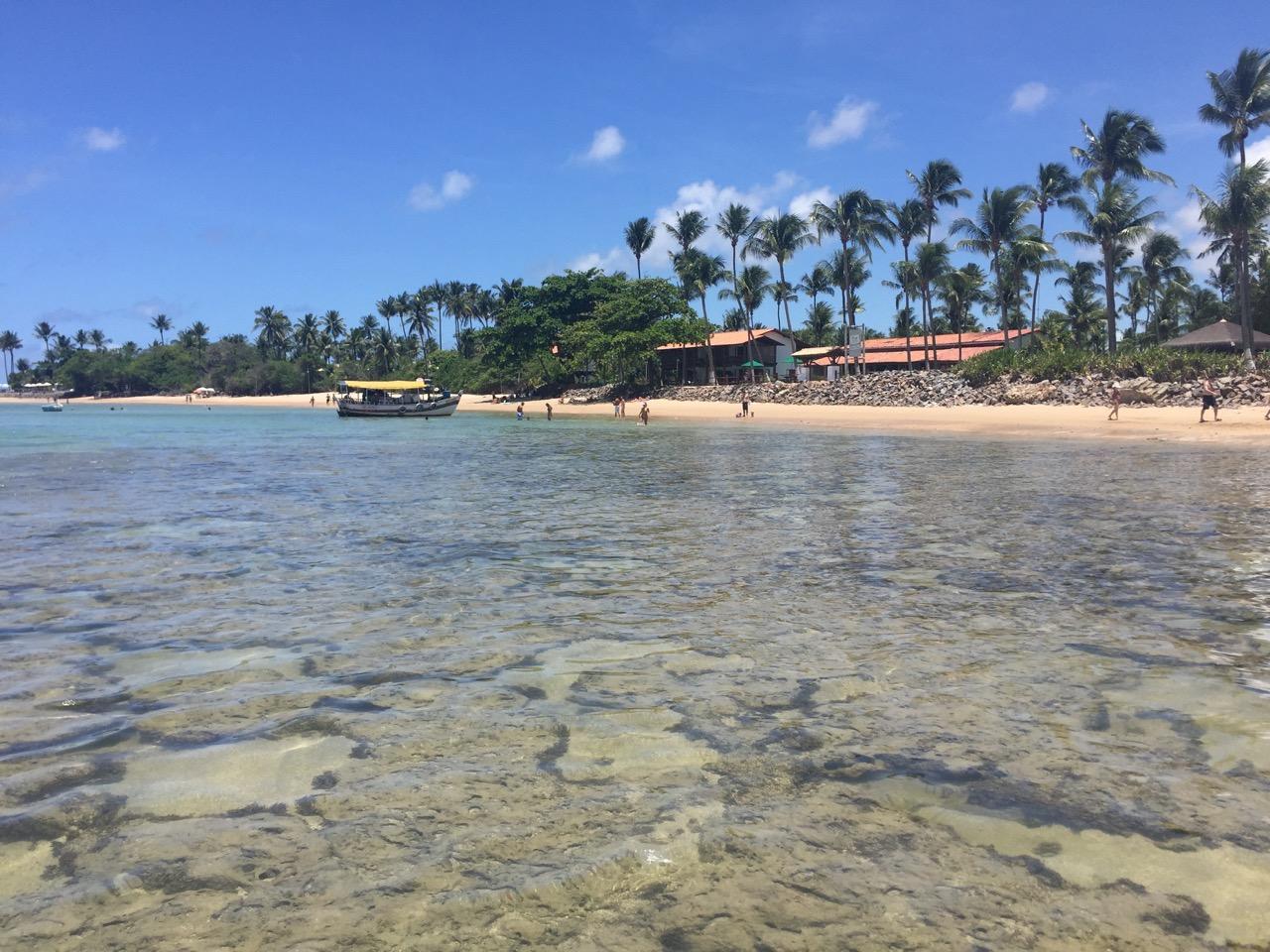 paraziți de coastă brazilieni)