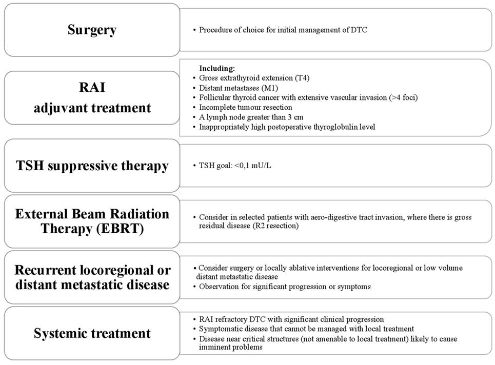 hpv e cancer colorretal
