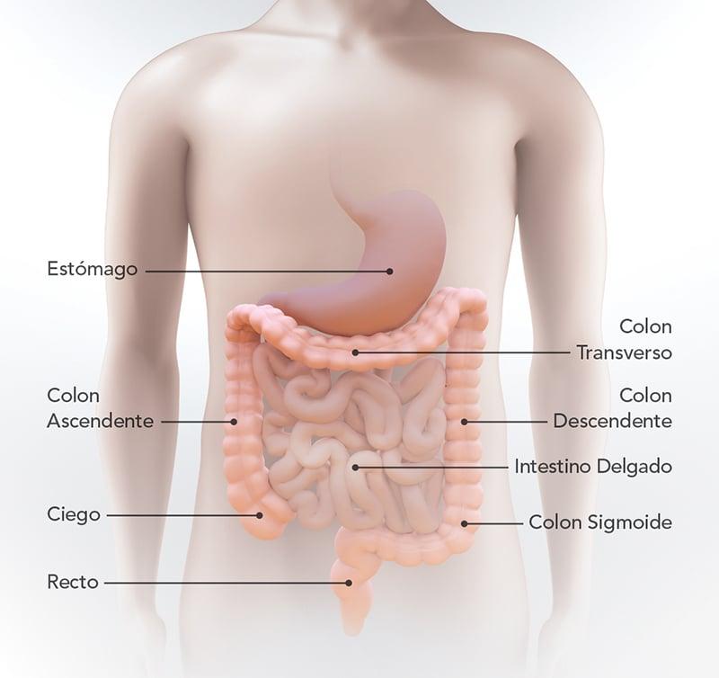 Cum pot fi depistate precoce cancerele de colon, plămân și prostată? – Raportul de gardă