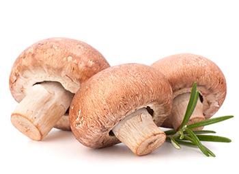 Vitamine si minerale- ciuperci