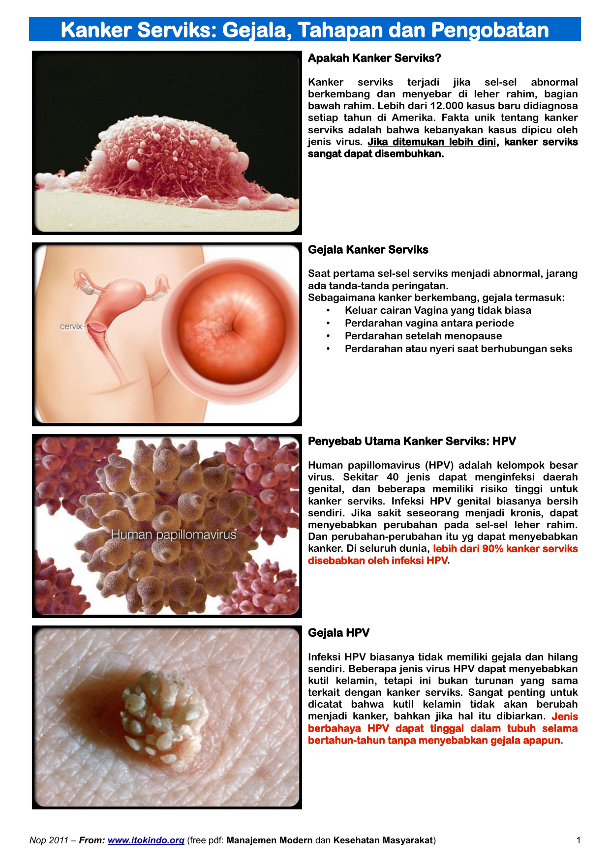 jenis hpv yang menyebabkan kanker serviks