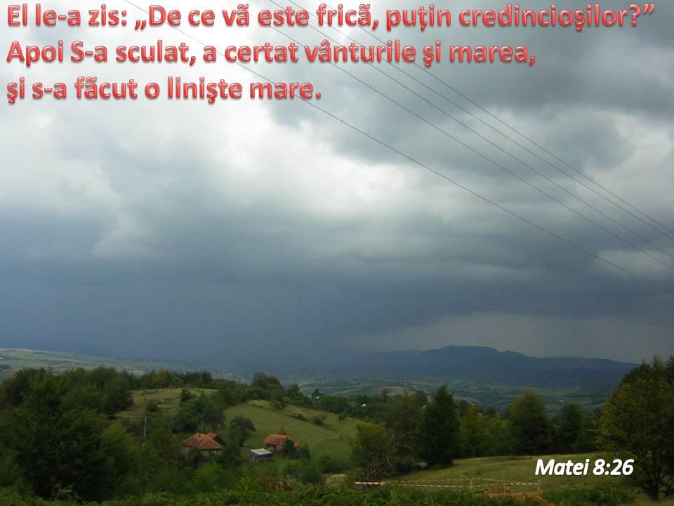 Songtext von Mădălina Manole - Aș da orice Lyrics