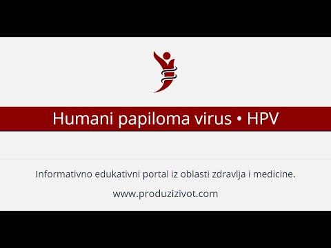 hpv papilloma virus sta je)