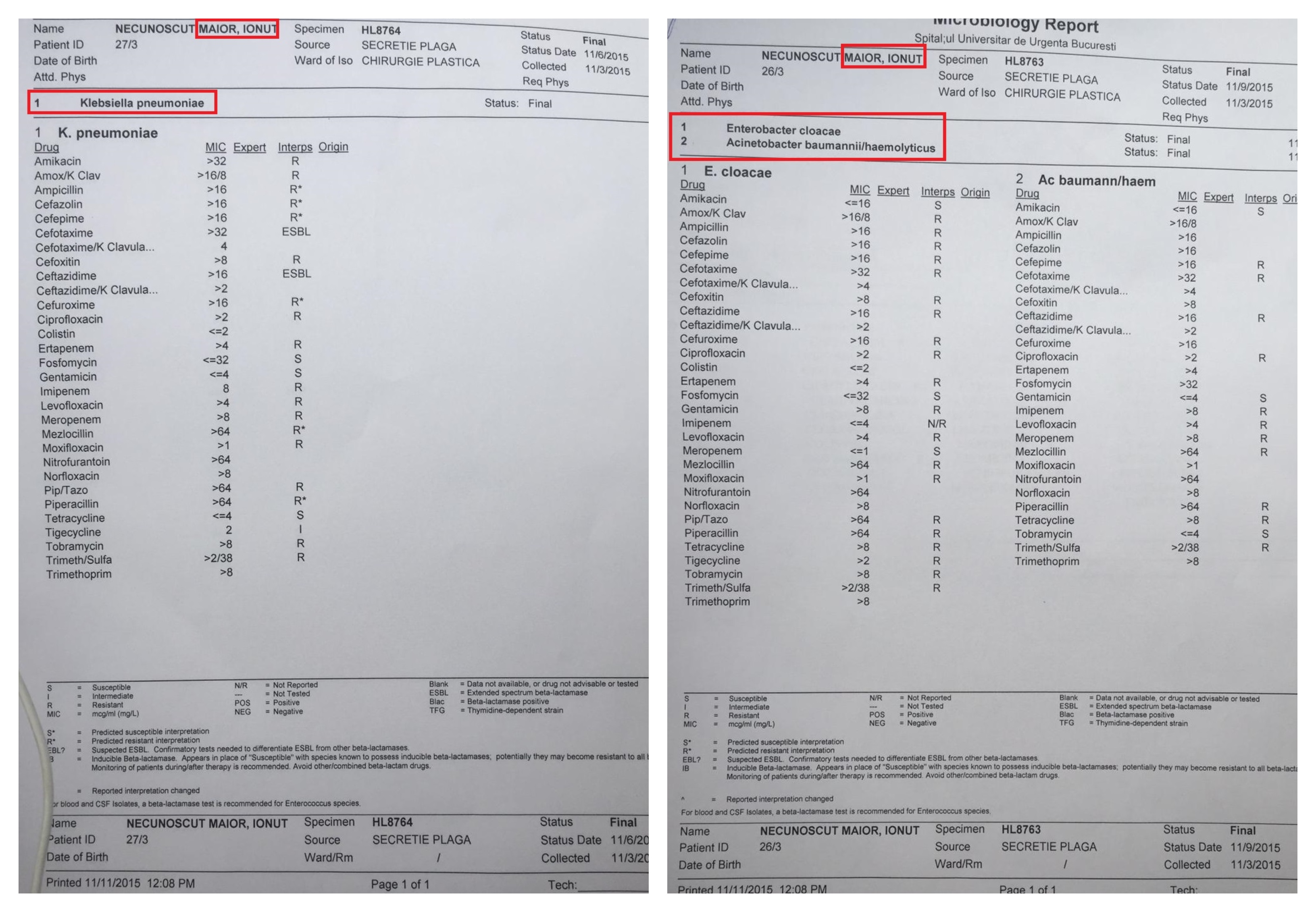 define papilloma virus helminths giardia tratament