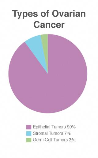 ovarian cancer types epithelial tumors)