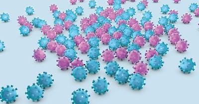 papilloma virus resta per sempre