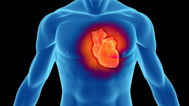 medicament împotriva bolilor de inimă)
