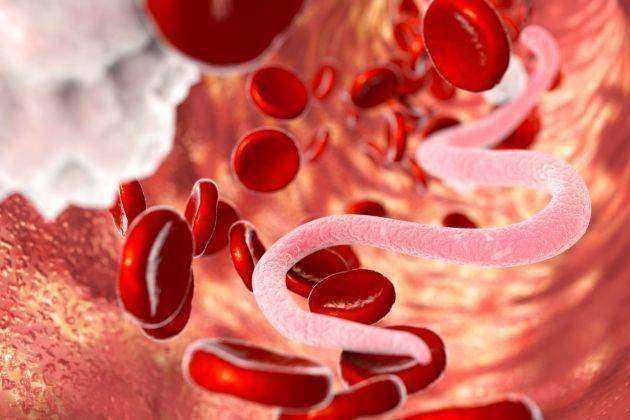 bolile helmintice sunt transmise de oameni simptomele giardiei féver