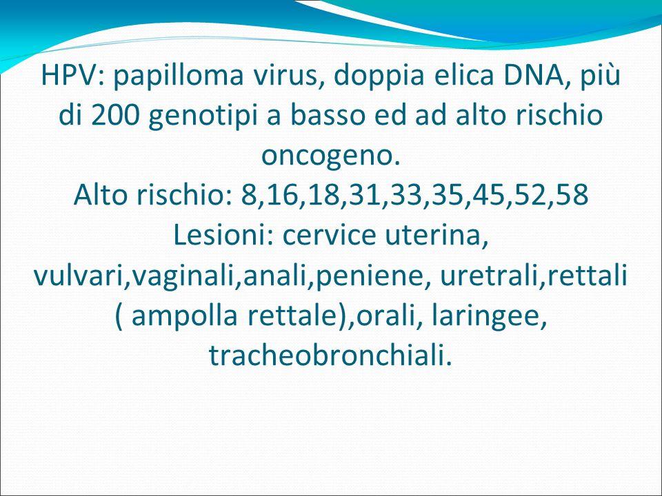 papilloma virus alto rischio oncogeno)