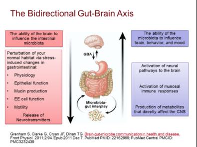 Consecințele complicațiilor dysbiosis asupra articulațiilor, Dysbiosis stress
