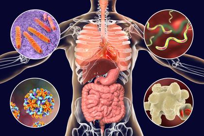 il papilloma virus passa da solo
