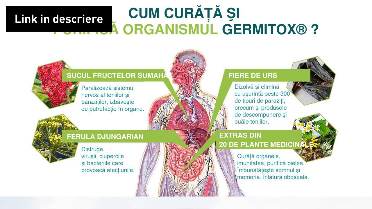 Parasites 12 Detox Forte, pret 41,00 RON-Herbagetica