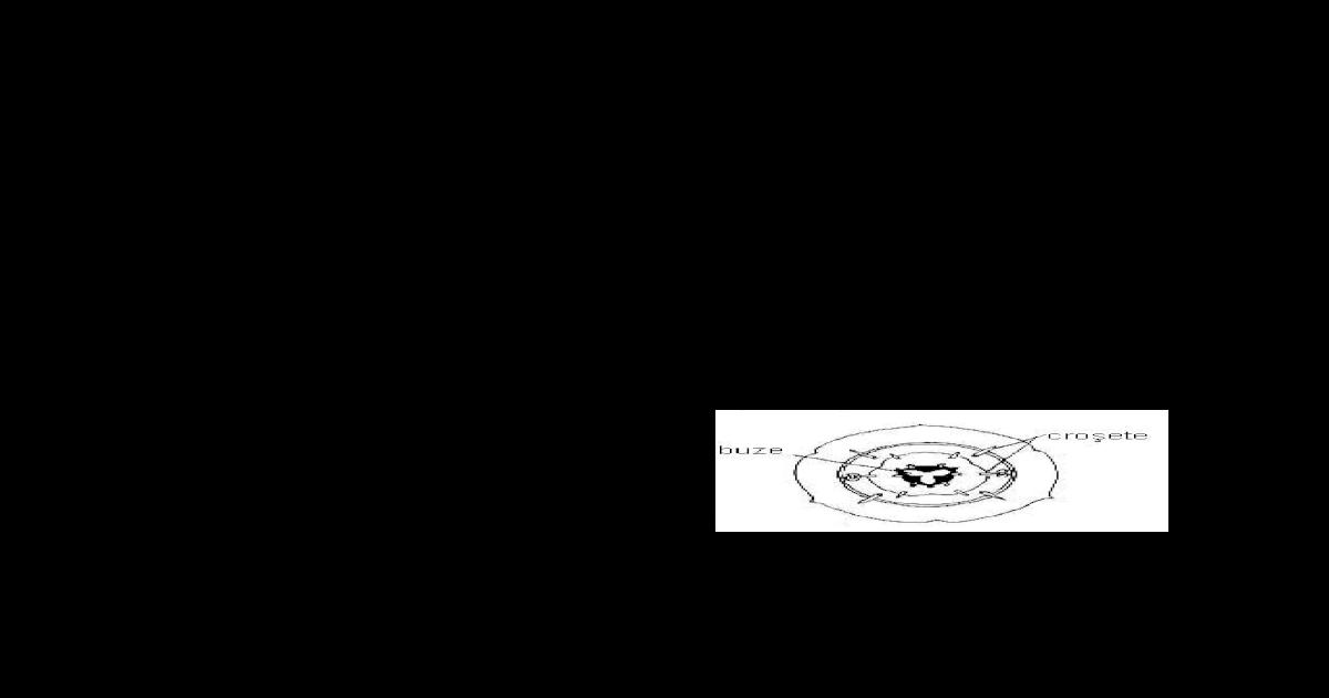 mai multe nemathelminteze de filum