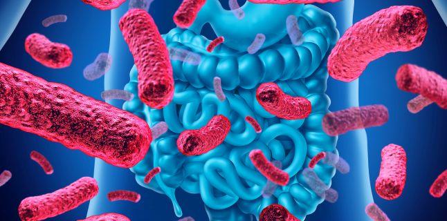 10 lucruri importante despre bacteriile sănătoase