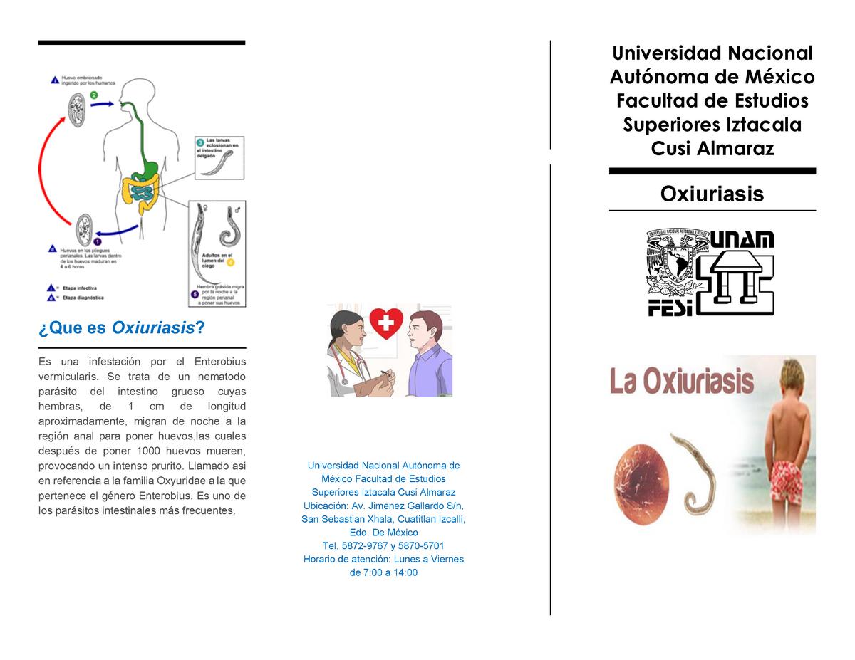 perioada de incubație a toxoplasmozei umane juvenile onset respiratory papillomatosis