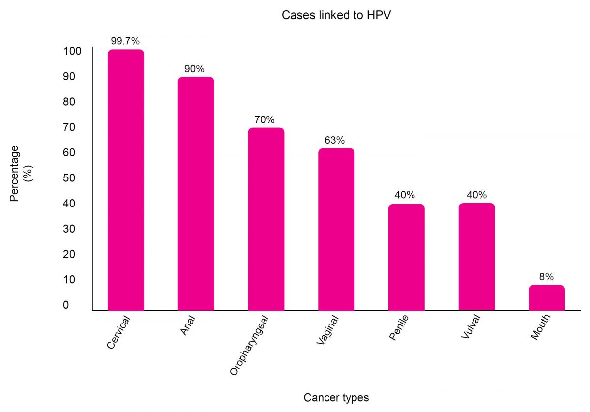 hpv high risk other squamous papilloma meaning