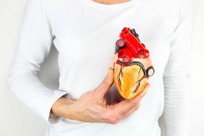 virusi koji napadaju srce