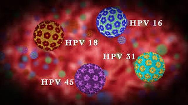 virus hpv tipe 16)