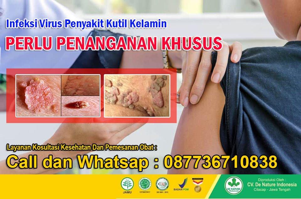 human papilloma virus adalah penyebab penyakit)