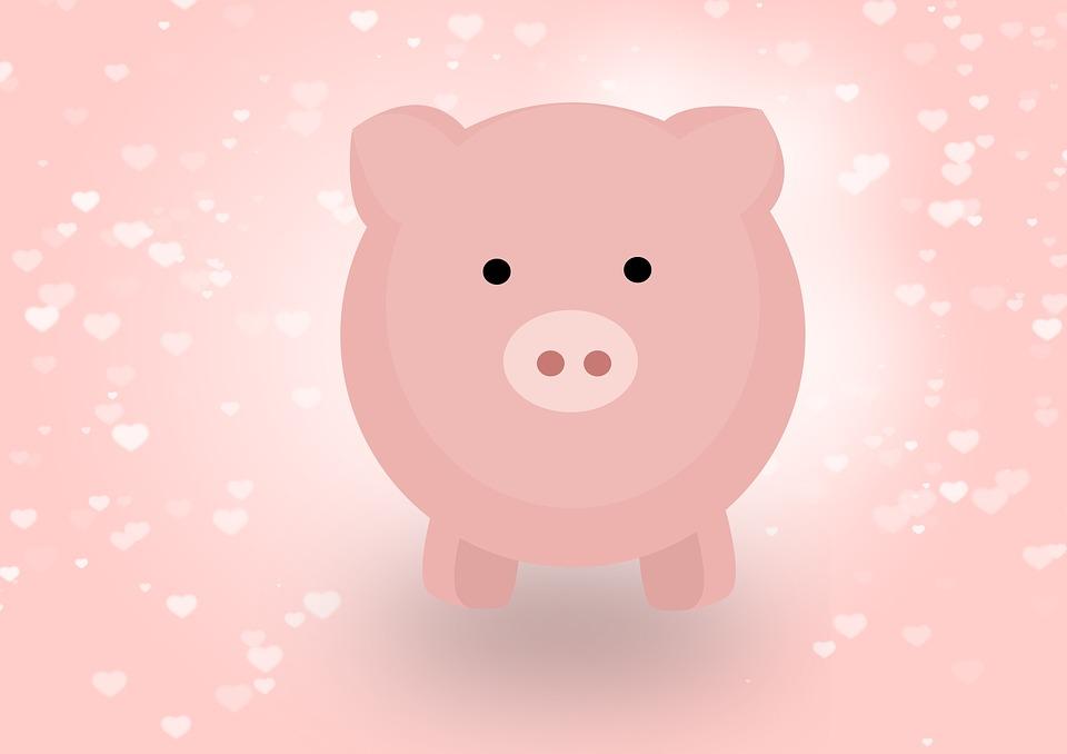 gaura de vierme pentru porci)