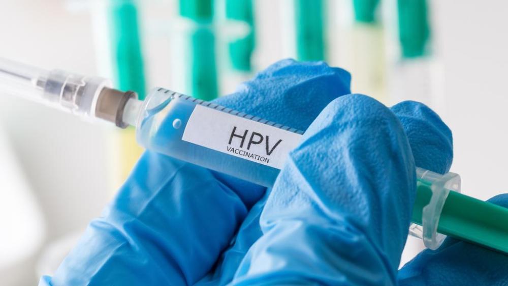 papillomavirus humain( hpv)
