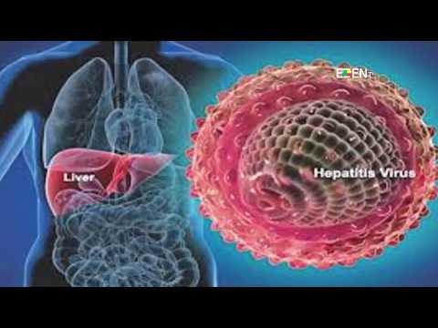 vaccino papilloma virus verona