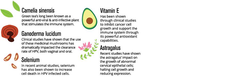 Hpv treatment vitamin e