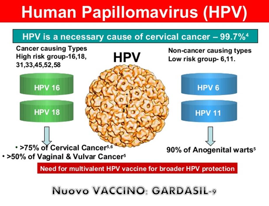 anti papilloma virus vaccino)