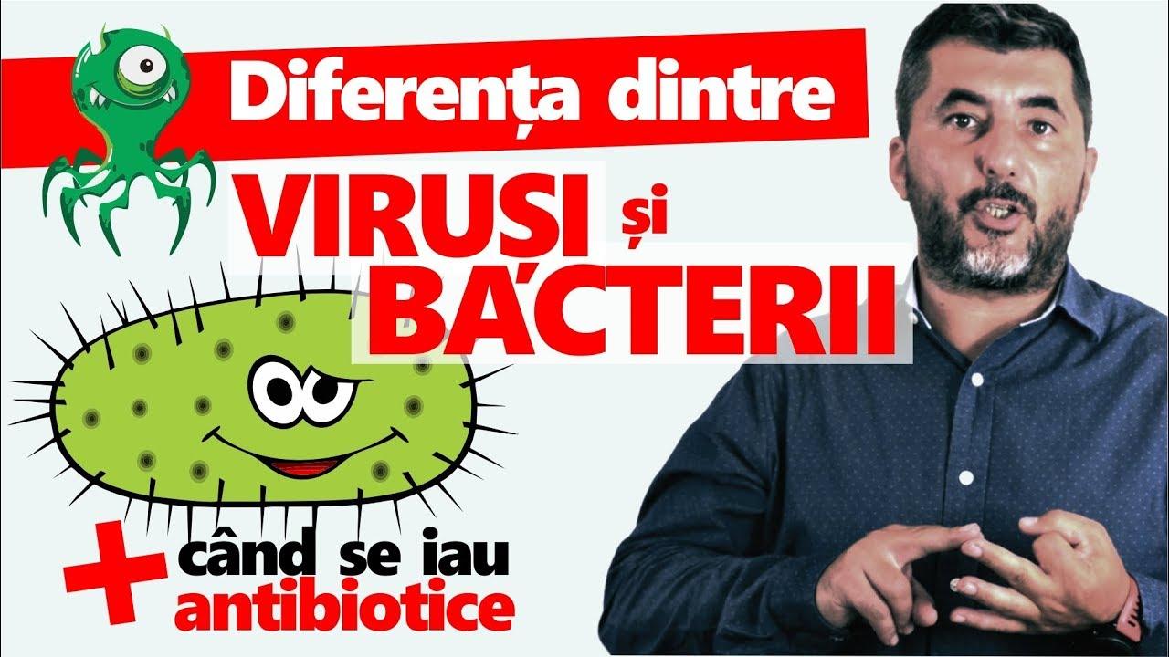 diferență între ciuperci viruși bacterieni și paraziți)
