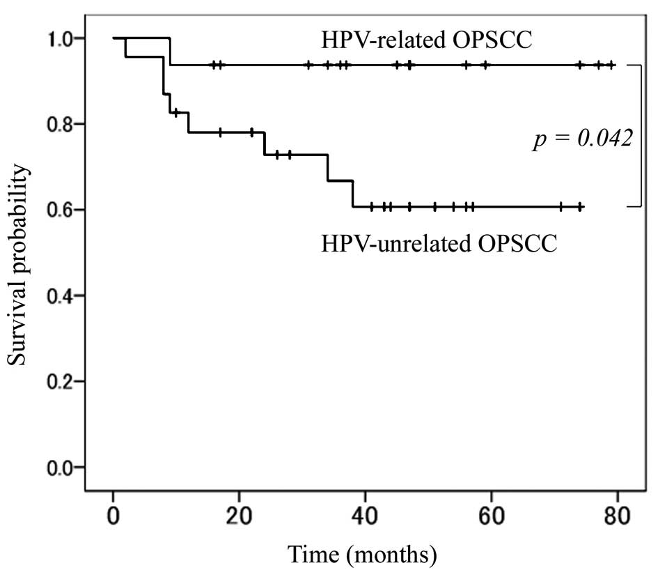 hpv throat cancer recurrence survival rate cancer de prostata ingles