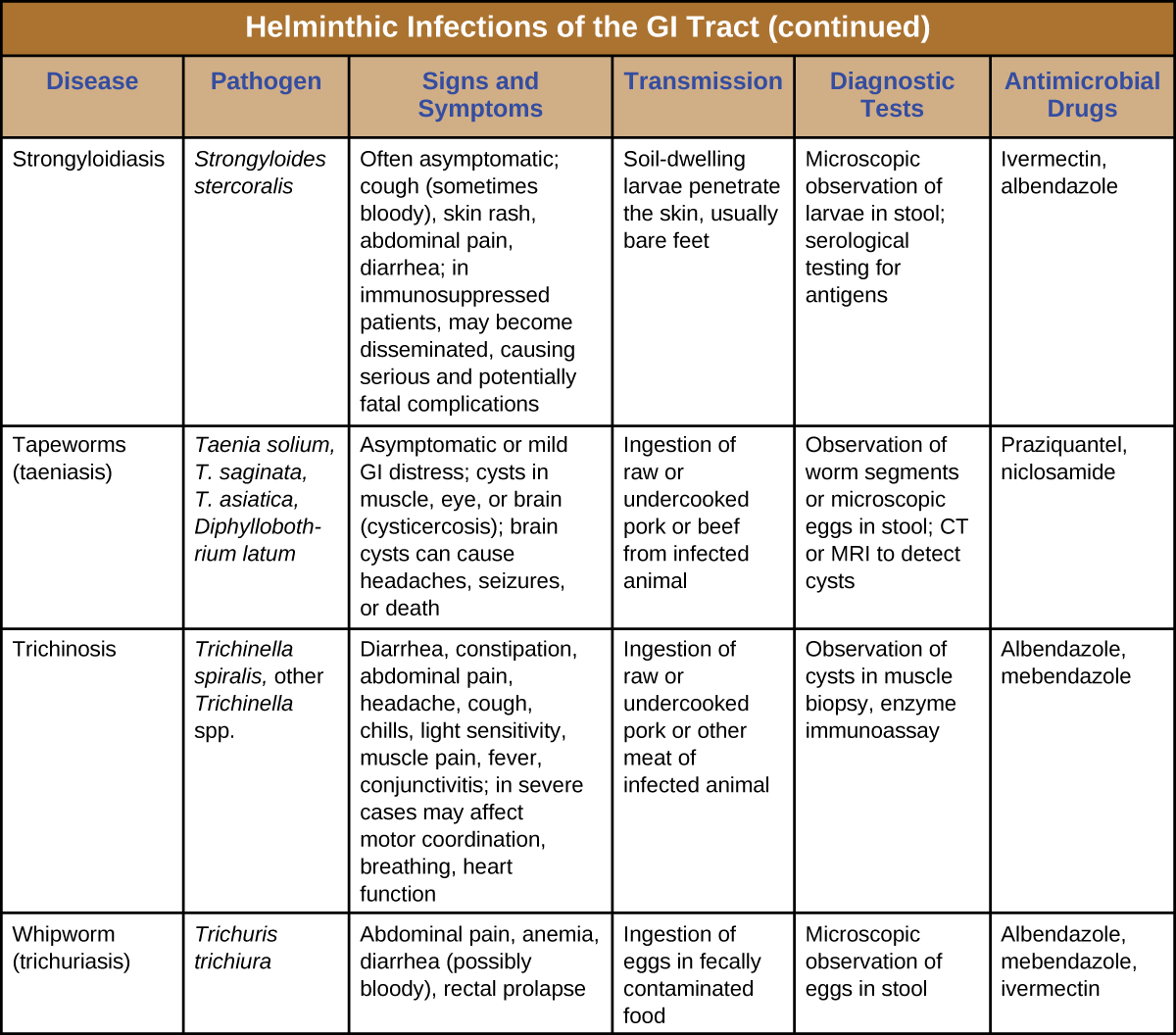 Helminths infections who -