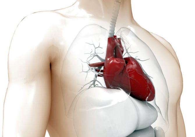 simptome de atac de cord la om