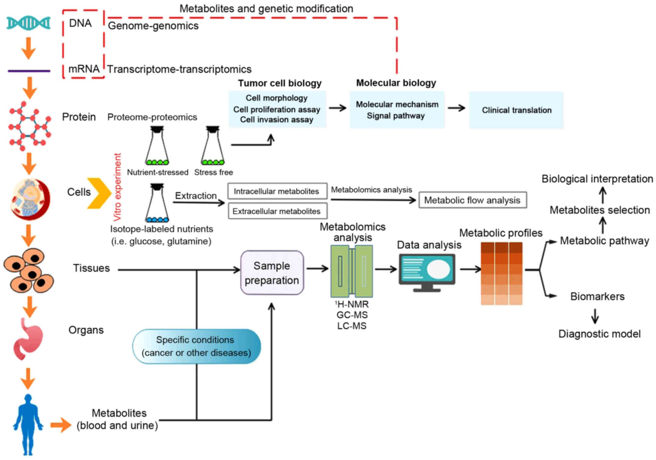 gastric cancer biomarkers a systems biology approach