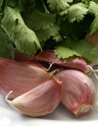 iaurt grecesc giardia)