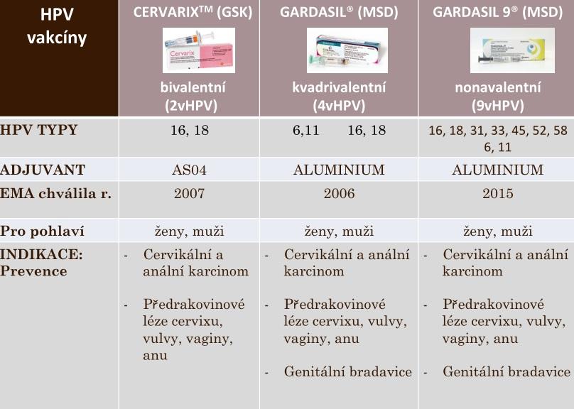 hpv viry ockovani)