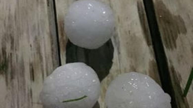 mărimea oului de vierbă hpv high risk nedir