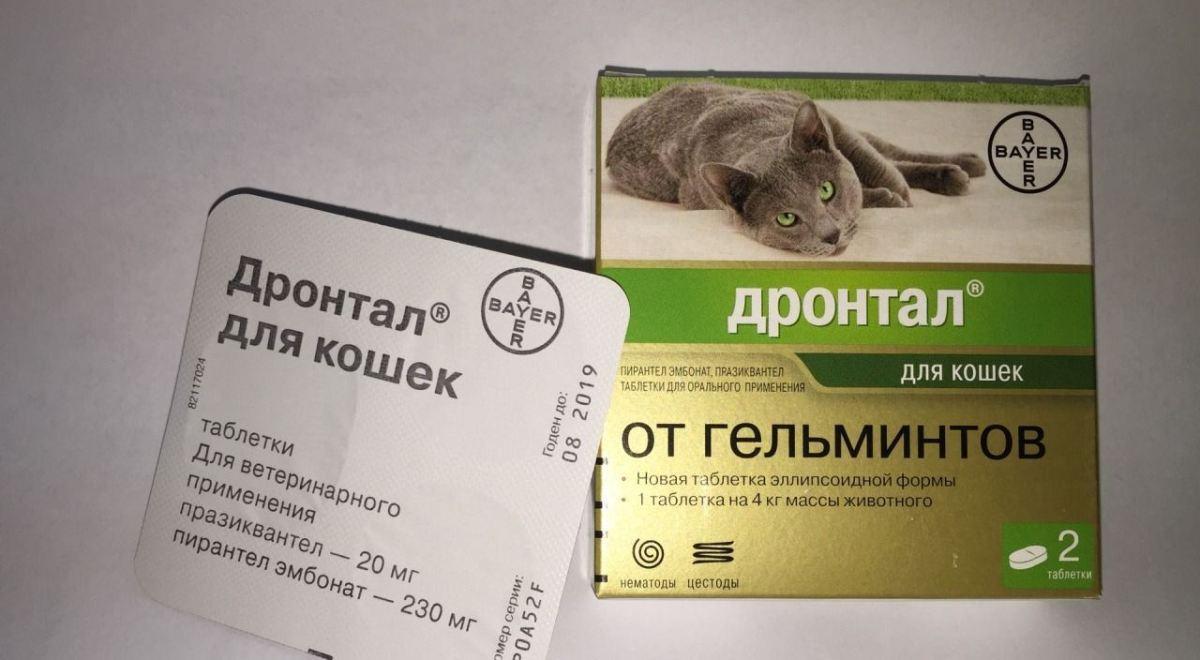 Droguri pentru viermi - 6 medicamente eficiente