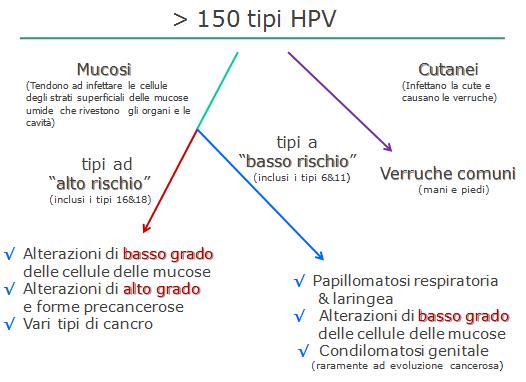 papilloma virus ceppo alto rischio)