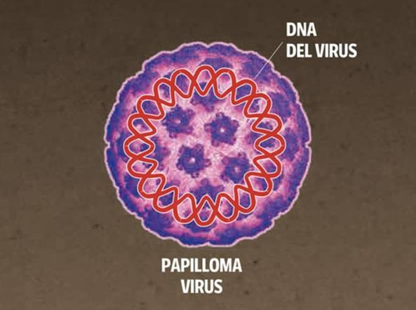 Contagio papilloma virus sintomi,